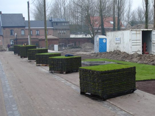 Pre planted grass in Ecoraster